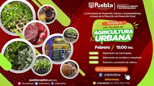 Ayuntamiento de Puebla impulsa la agricultura urbana con talleres virtuales